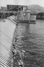karluk, river, Alaska, spawned, pink, salmon, dead, Karluk, river, counting, weir