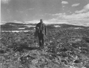 man, carrying, caribou, calf, gunny, sack, tundra
