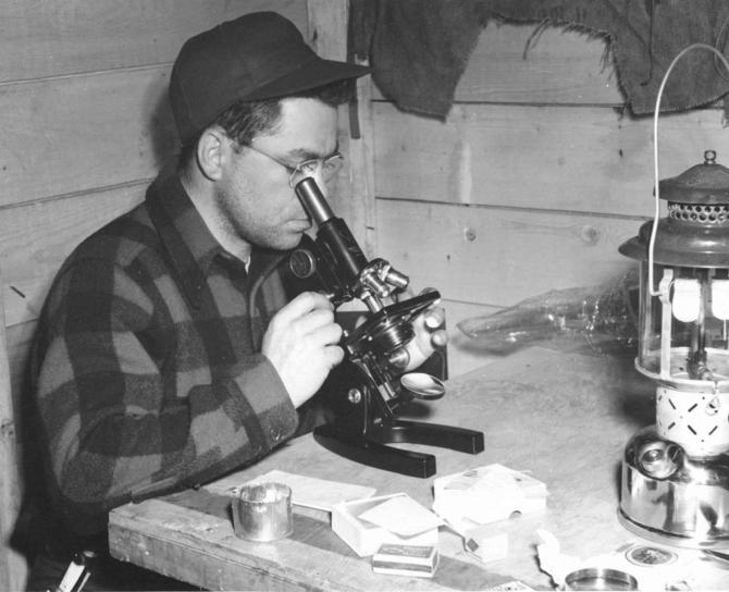 người đàn ông, kính hiển vi