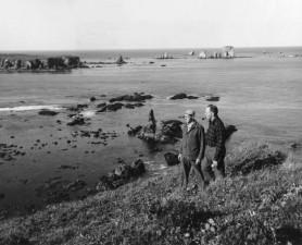 muži, chôdza, pobrežie