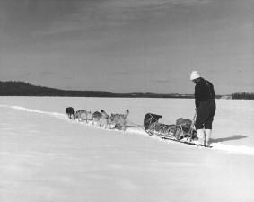 musher, tým, Tábor, ostrov, jezero