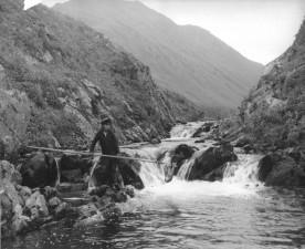 stara, fotografija, mladi dečko, mreža, ribe, potok