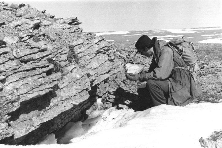 paleozoic, варовик разкопка,
