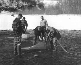 хора, waterpump, река, старата, черно и бяло фотография