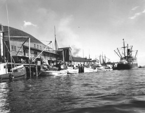 pequeno, velho, álbum de barcos, foto, foto vintage,
