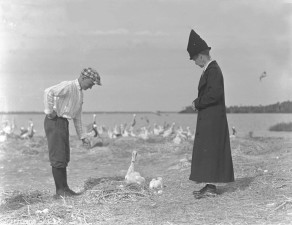 dvoje ljudi, hrane, Pelikan, ptice