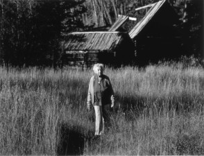 vintage, photo, old, female, old, barn