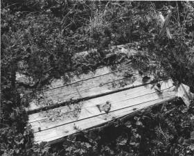 vintage, foto, exsposed, aus Holz, Sarg, Kreuz