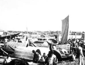 berba, fotografija, ljudi, posao, poplava, voda, Bangladeš