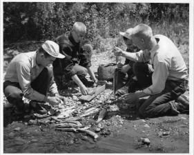 pesata, di misura, l'assunzione, la scala, i campioni, rastrelliera, trota, fiume