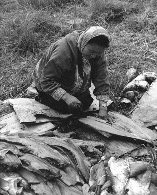 woman, filleting, fish, vintage, photo