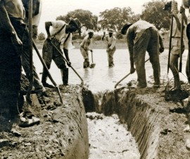 workers, practicing, vector, control, digging, drainage, ditch, help, disperse, standing, water