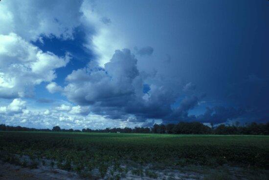 云, 田野, 风景, 陆地, 海岸