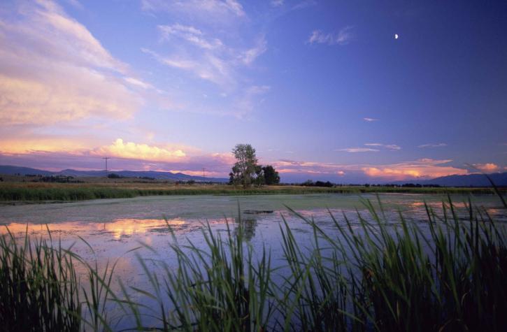 Metcalf, nasjonalpark, naturskjønne