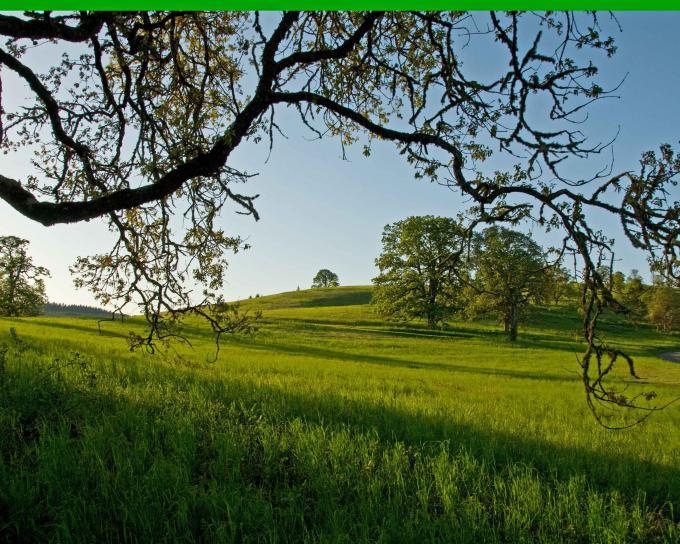 oak, savannah, landscape