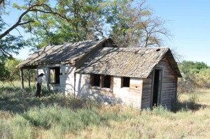 old, house, wooden, house, field