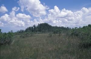 trefa, Kajeput, vzdálenost