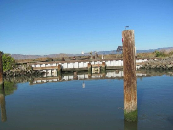 slough, piling, foreground
