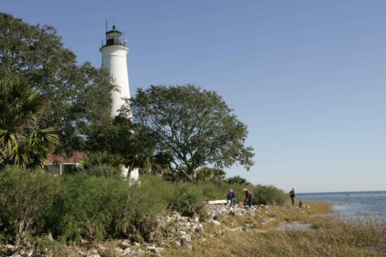 Marks, lighthouse, stands, trees, blue, ocean, mariners, way
