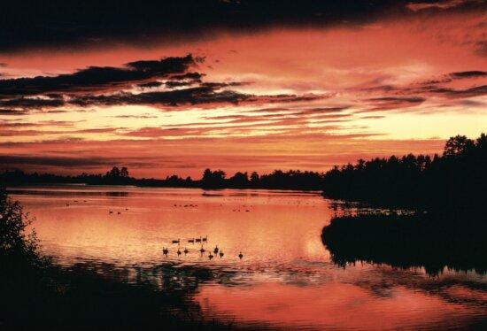 sunset, free, wallpaper