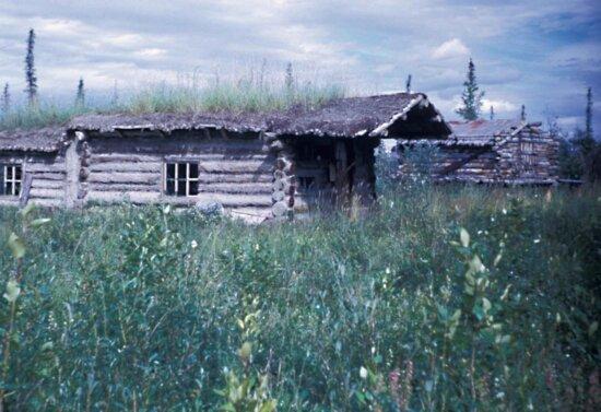 trapper, cabin