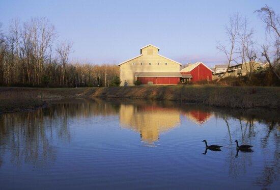 across, pond, rear, building