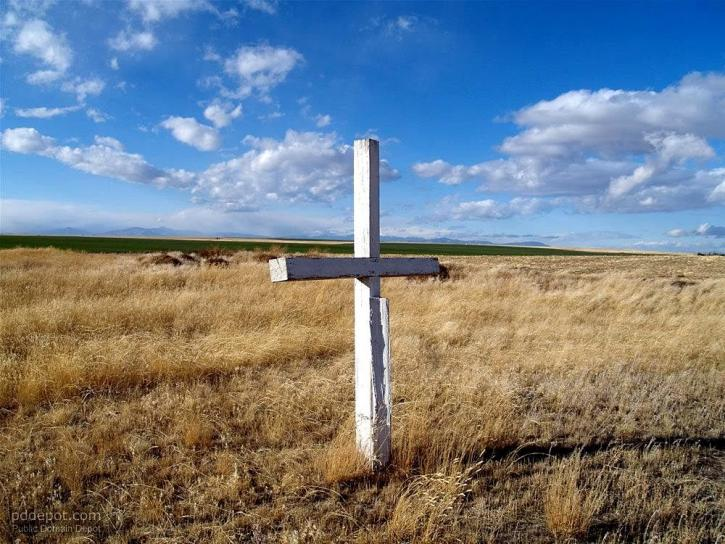 white, cross, cemetery