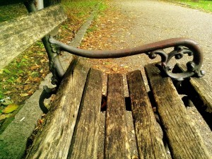 wooden, bench, relaxing, park