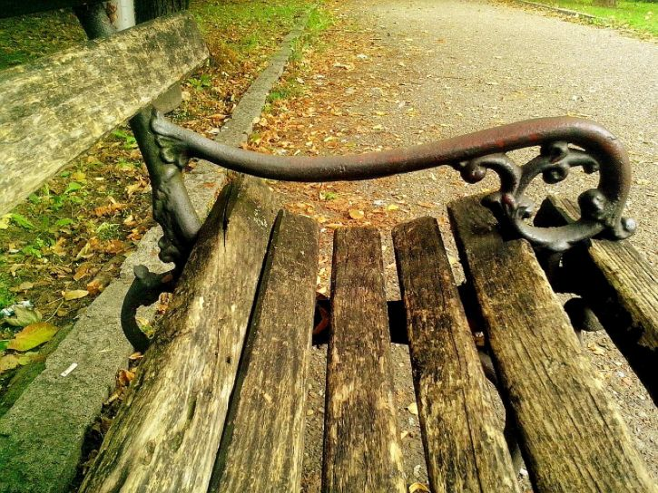wooden, bench, relaxing, park